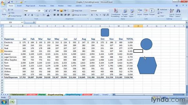 Understanding the options in Shape formatting: Excel 2007: Advanced Formatting Techniques