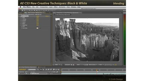 Black & White: After Effects CS5 New Creative Techniques