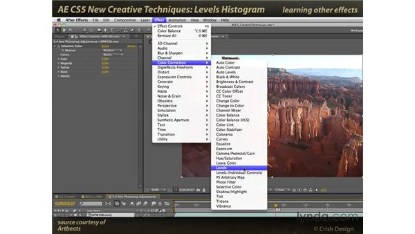 Levels: After Effects CS5 New Creative Techniques