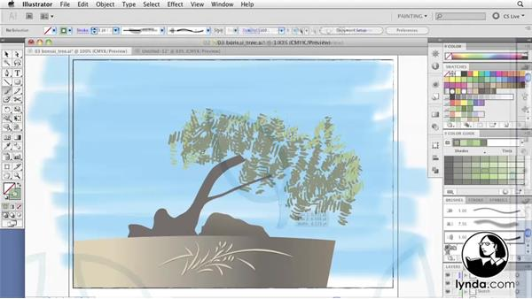 Welcome: Illustrator CS5 New Features