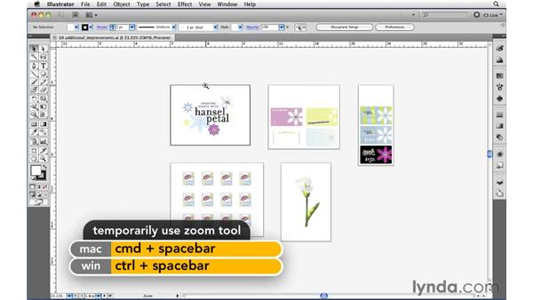 Applying resolution-independent raster effects: Illustrator CS5 New Features