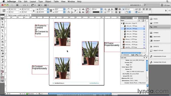 Using Auto-Fit to set images: InDesign CS5 New Features