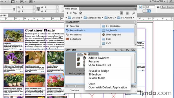 Exploring Mini-Bridge: InDesign CS5 New Features