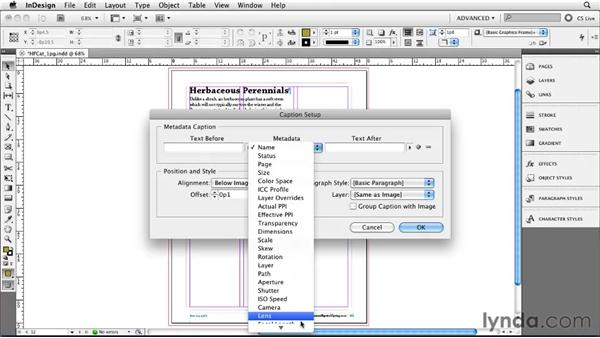 Getting into Live Captions: InDesign CS5 New Features