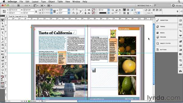 Creating documents with interactive features: InDesign CS5 New Features