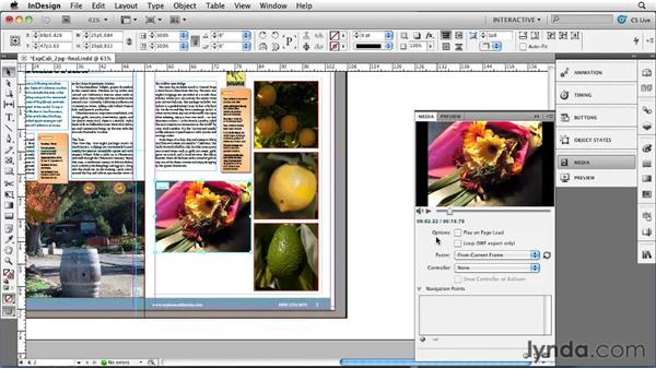 Using the Media panel: InDesign CS5 New Features
