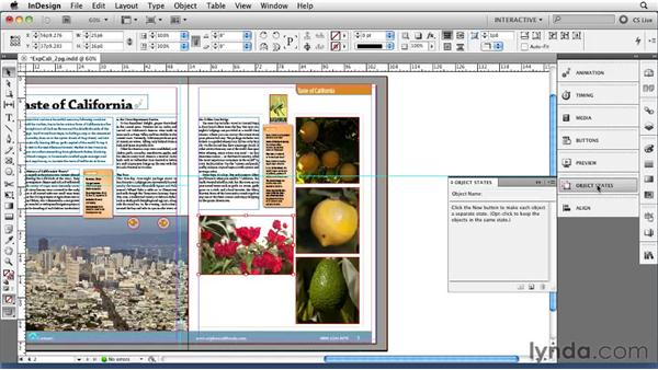 Creating multistate objects with the States panel: InDesign CS5 New Features