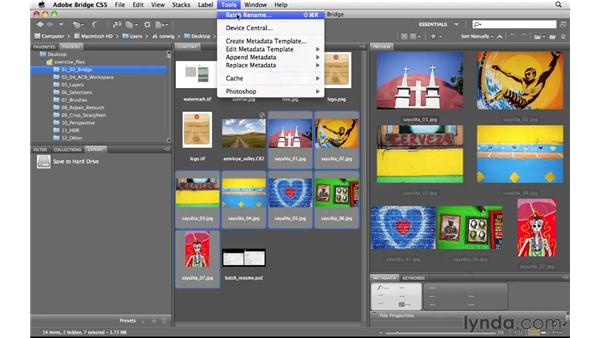 Improved batch renaming: Photoshop and Bridge CS5 for Photographers New Features