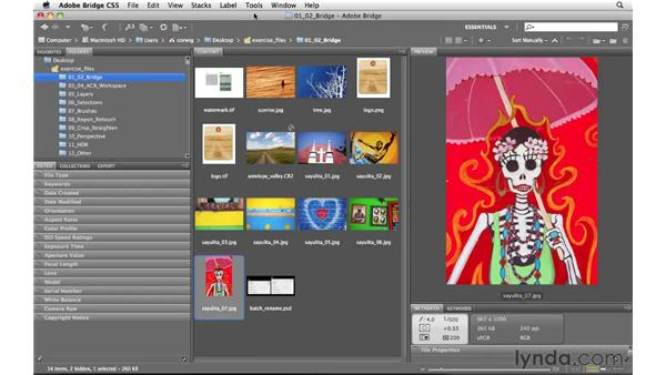 Working between Bridge and Photoshop: Photoshop and Bridge CS5 for Photographers New Features