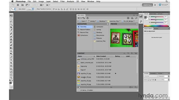 Finding and reviewing photos: Photoshop and Bridge CS5 for Photographers New Features