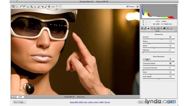 Reducing noise: Photoshop and Bridge CS5 for Photographers New Features