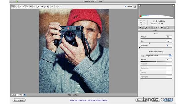 Adding film grain: Photoshop and Bridge CS5 for Photographers New Features