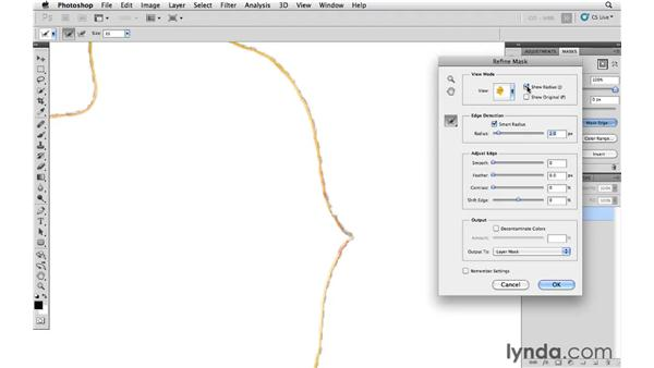 Making better selections using Smart Radius: Photoshop and Bridge CS5 for Photographers New Features