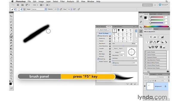 Getting more efficient with brushes: Photoshop and Bridge CS5 for Photographers New Features