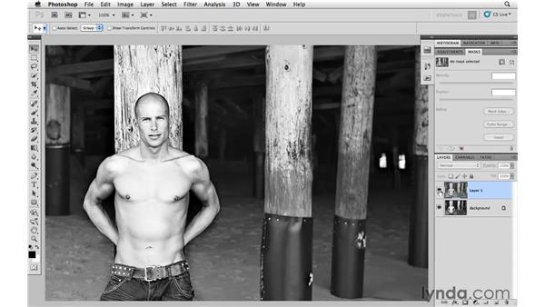 Blending HDR toning for a more subtle effect: Photoshop and Bridge CS5 for Photographers New Features