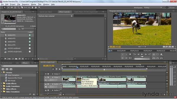 Testing the new Mercury Playback Engine: Premiere Pro CS5 New Features