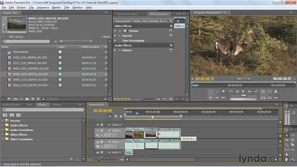 Importing RED R3D files directly: Premiere Pro CS5 New Features