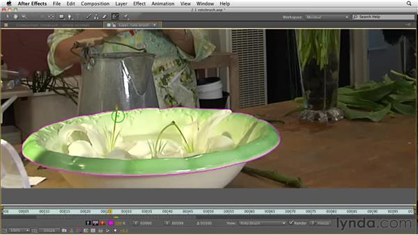 Making a quick selection with Roto Brush: After Effects CS5 New Features