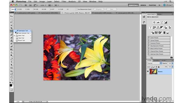 Understanding the tool enhancements: Photoshop CS5 New Features