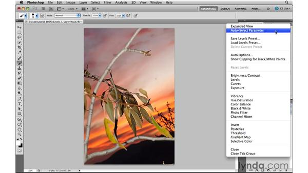Working with the panel additions: Photoshop CS5 New Features