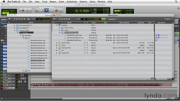 Drum sweetening strategies: Organizing your sample library: Pro Tools Projects: Editing Drums Using Beat Detective and Sound Replacer