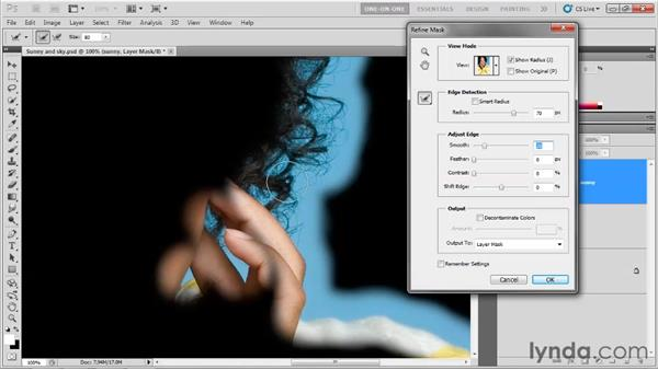 Refining masks: Photoshop CS5 Top 5