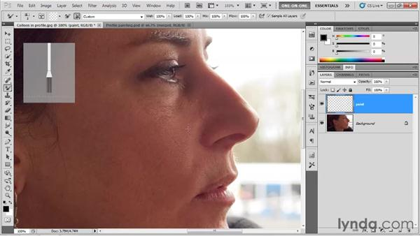 Painting a photograph: Photoshop CS5 Top 5