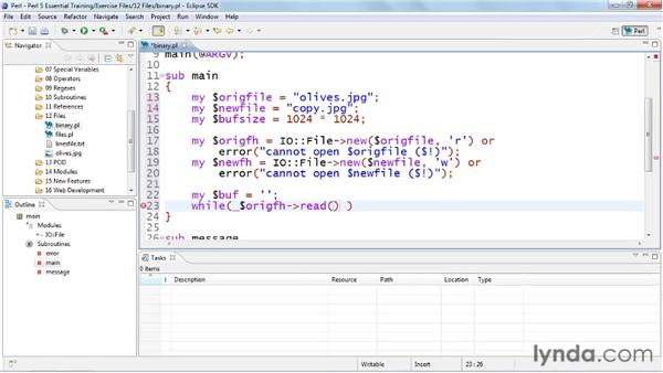 Working with binary files: Perl 5 Essential Training (2010)