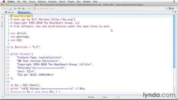 Exploring CGI: Perl 5 Essential Training (2010)
