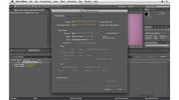 Exporting content as a movie file: After Effects CS5 Essential Training