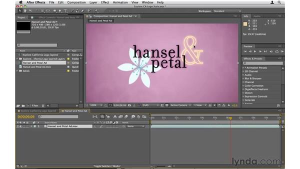 Animating scale: After Effects CS5 Essential Training