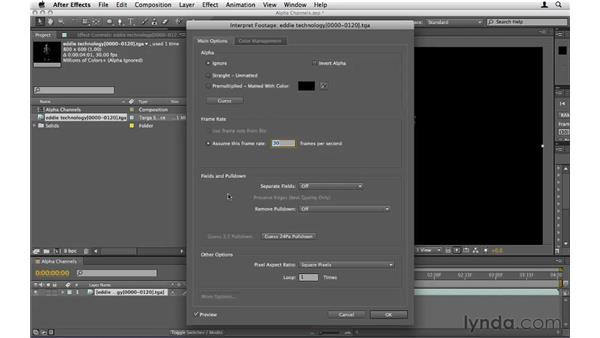 Importing footage with an alpha channel: After Effects CS5 Essential Training
