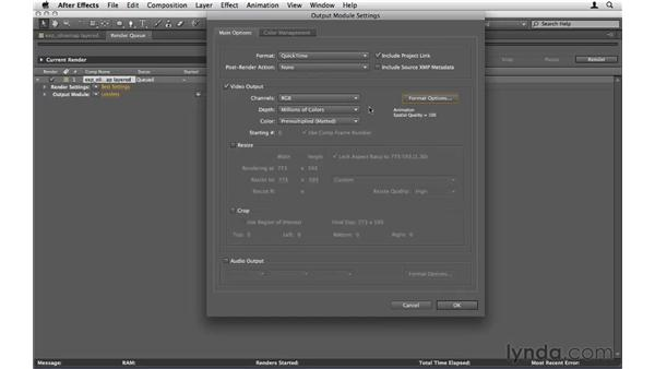 How should I export my video?: After Effects CS5 Essential Training