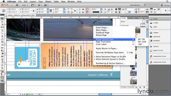 Rotating pages and spreads: InDesign CS5 Essential Training