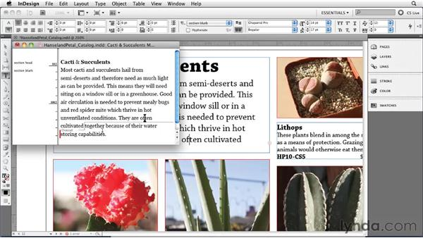 Using the Story Editor: InDesign CS5 Essential Training