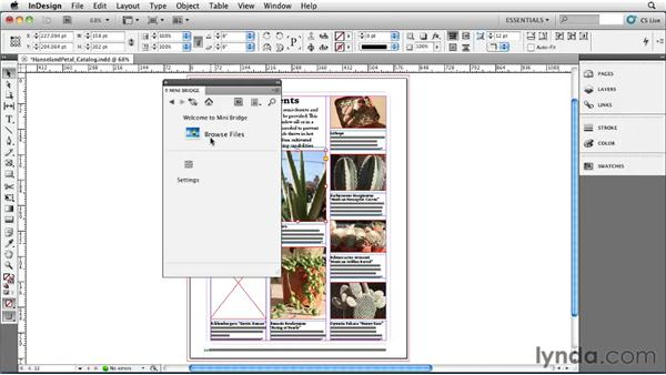 Importing from Mini Bridge: InDesign CS5 Essential Training