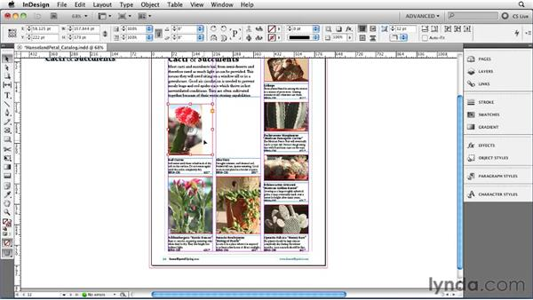 Fitting graphics to a frame: InDesign CS5 Essential Training