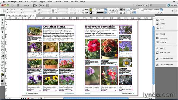 Positioning objects with the Page Gap tool: InDesign CS5 Essential Training