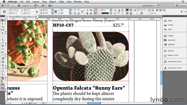 Adding rounded corners and other corner options: InDesign CS5 Essential Training