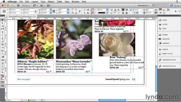 Aligning and distributing: InDesign CS5 Essential Training