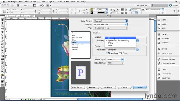 Using the Print dialog box: InDesign CS5 Essential Training