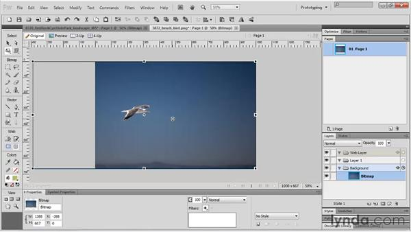 Resizing images : Fireworks CS5 Essential Training
