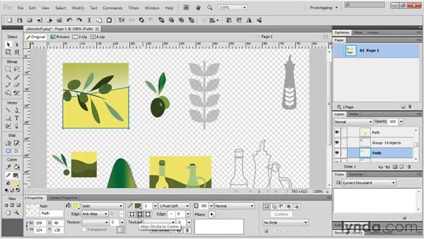Looking at the vector toolset: Fireworks CS5 Essential Training