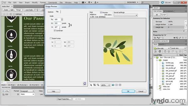 Copying and pasting objects to Dreamweaver: Fireworks CS5 Essential Training