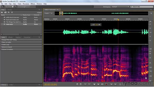 : Soundbooth CS5 Essential Training