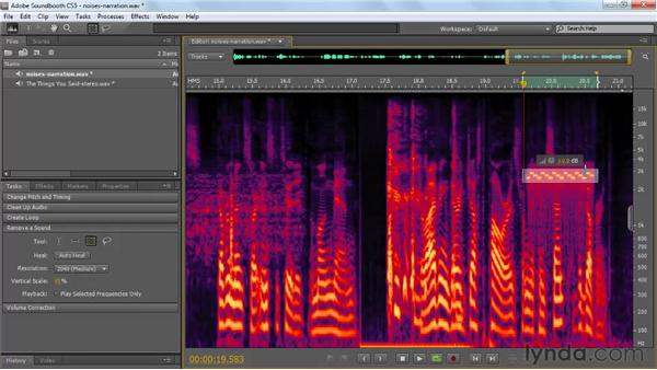 Removing individual sounds: Soundbooth CS5 Essential Training