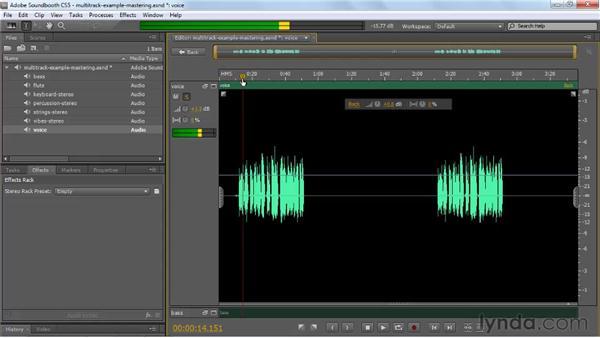Adding effects to individual tracks: Soundbooth CS5 Essential Training