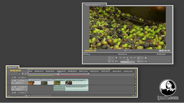 Welcome: Premiere Pro CS5 Essential Training