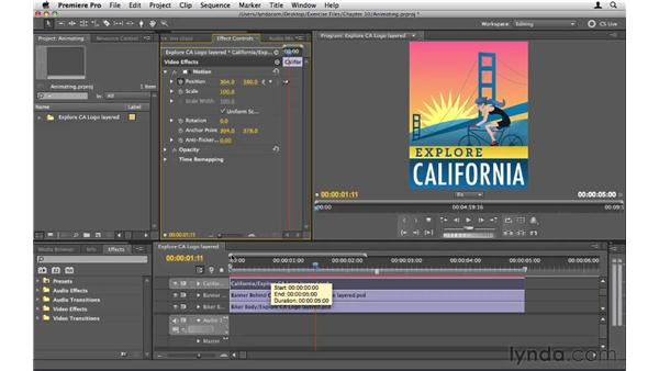 : Premiere Pro CS5 Essential Training