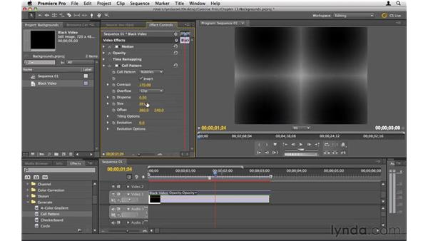 Creating background textures: Premiere Pro CS5 Essential Training
